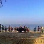 marari beach (19)