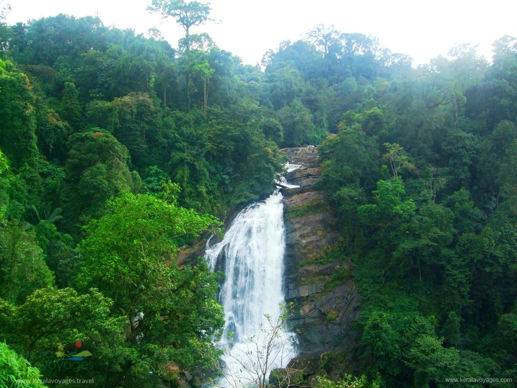 eravikulam wildlife sanctuary