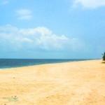 marari beach (14)